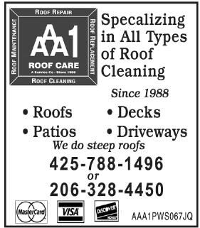 AAA1 Roof Care