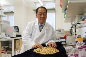 Auburn professor plays role in mapping peanut genetics breakthrough