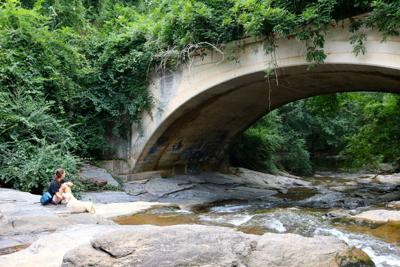 creekline trial 1