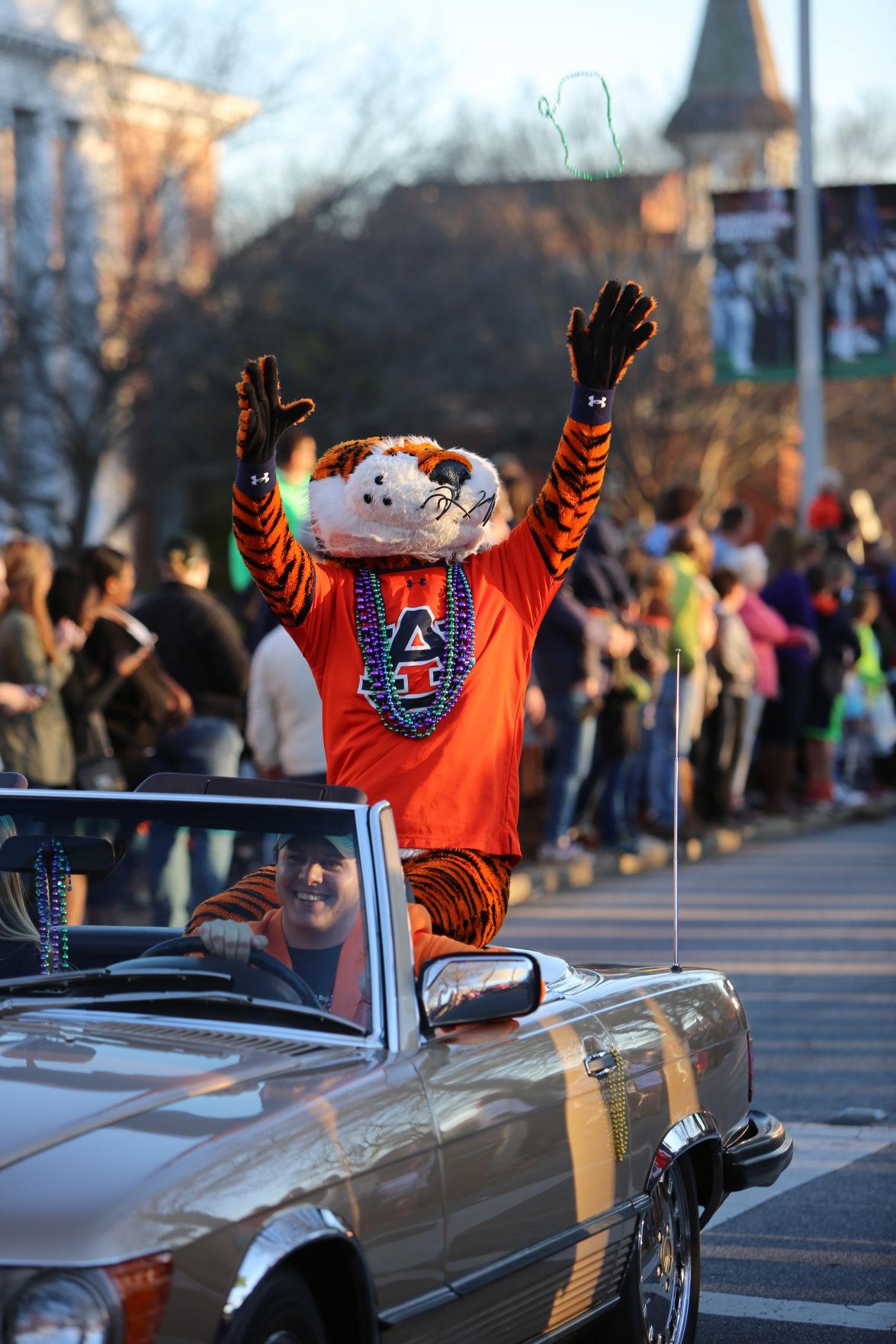 Krewe de Tigris Mardi Gras parade 2017