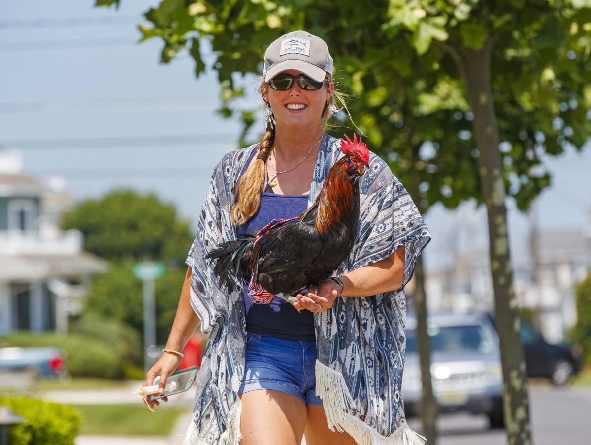 Photos: Bluff the Instagram rooster lifting spirits in N.J.