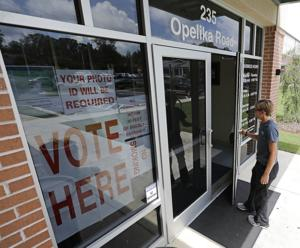 Lee County sees 11 percent voter turnout