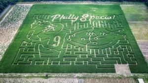 New Jersey farm turns corn maze into celebration of Eagles' Super Bowl championship