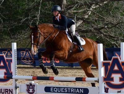No 1 Auburn Equestrian Handles No 10 Ut Martin 17 0