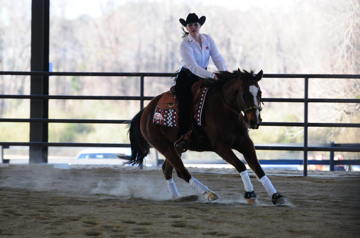 A Beginner S Guide To Equestrian The Horse Based Sport