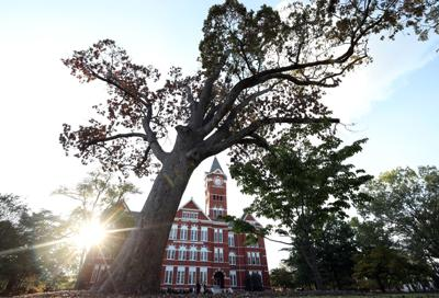 AU facing new $10M lawsuit over in-state tuition