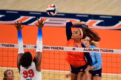 Volleyball: Auburn vs Florida
