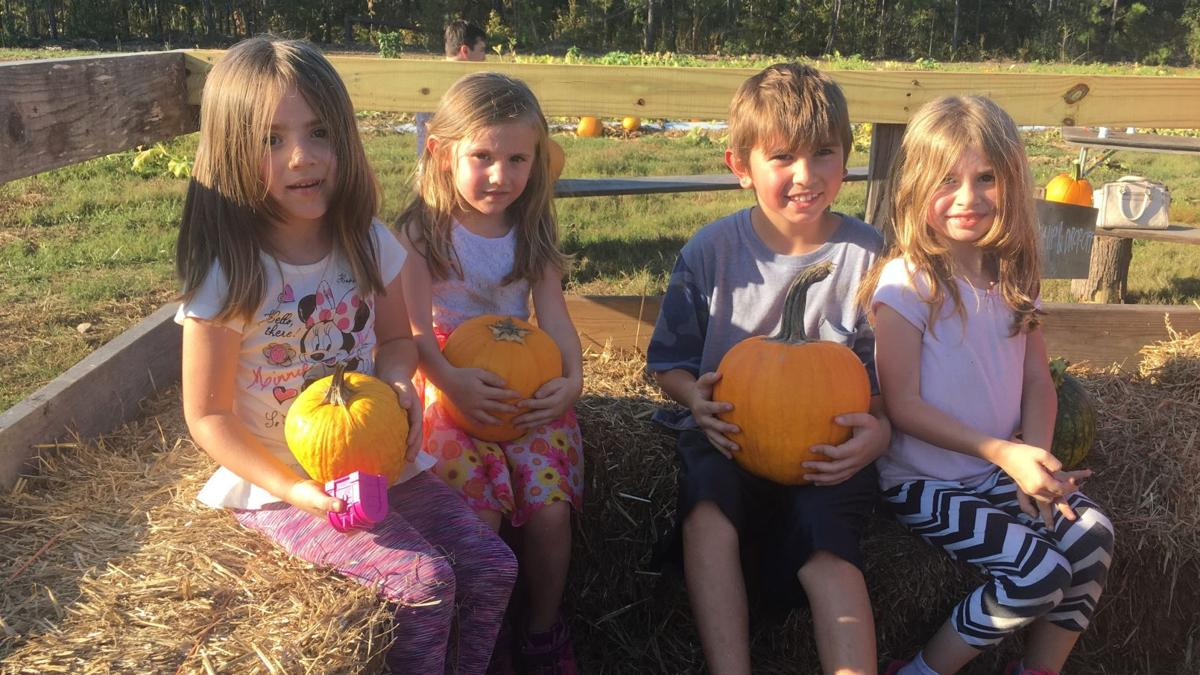 Auburn pumpkin patches welcome those seeking Fall delights