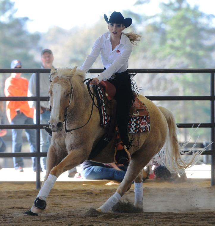 Auburn Equestrian Has To Not Only Worry About Health Of