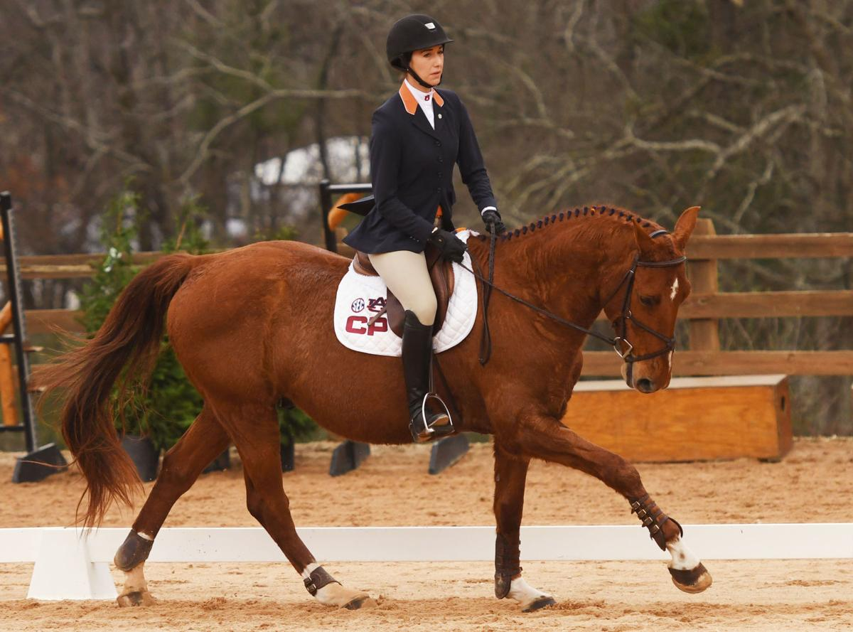 Auburn Equestrian Defeats Texas A Amp M Advances To Face