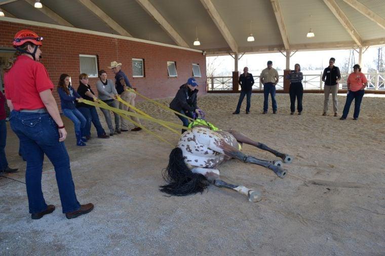 Auburn University Vet School Offers Large Animal Emergency