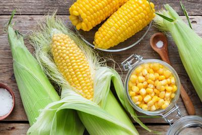Issue No. 27: Organic corn in Illinois