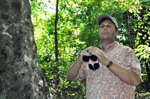 Auburn professor seeks to improve biodiversity of urban green spaces