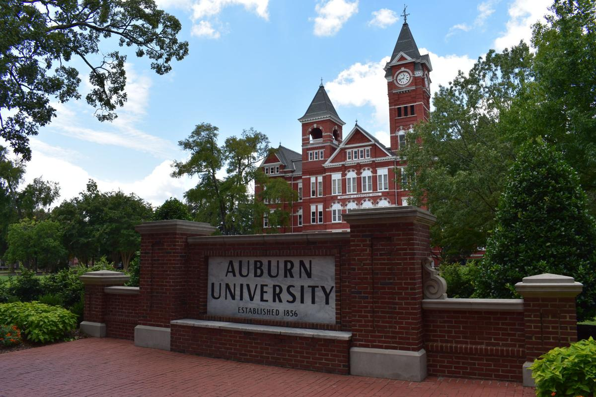 Auburn Economic Development