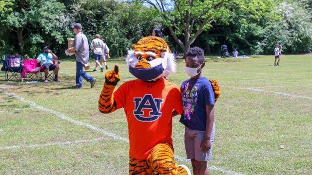 Aubie the Tiger at CityFest