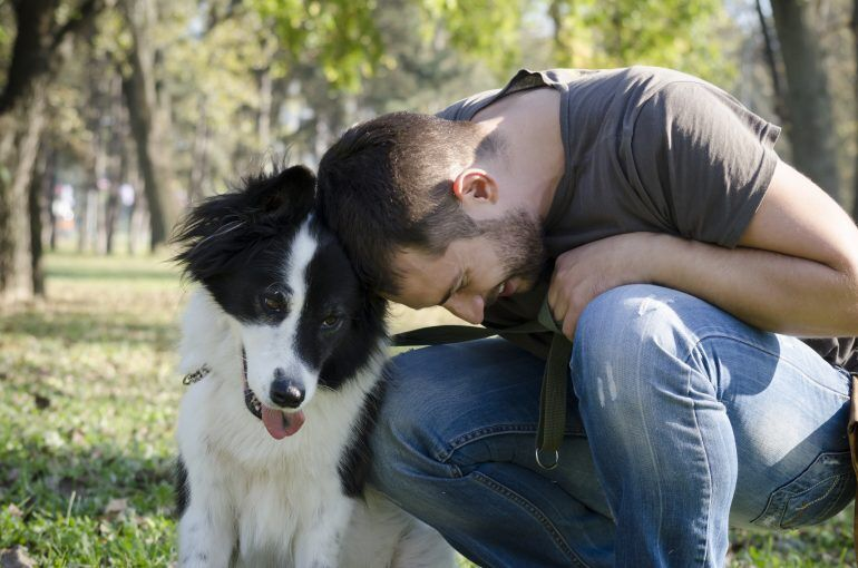 Animal liability insurance can be particularly useful if your dog has a history of aggressive behavior.