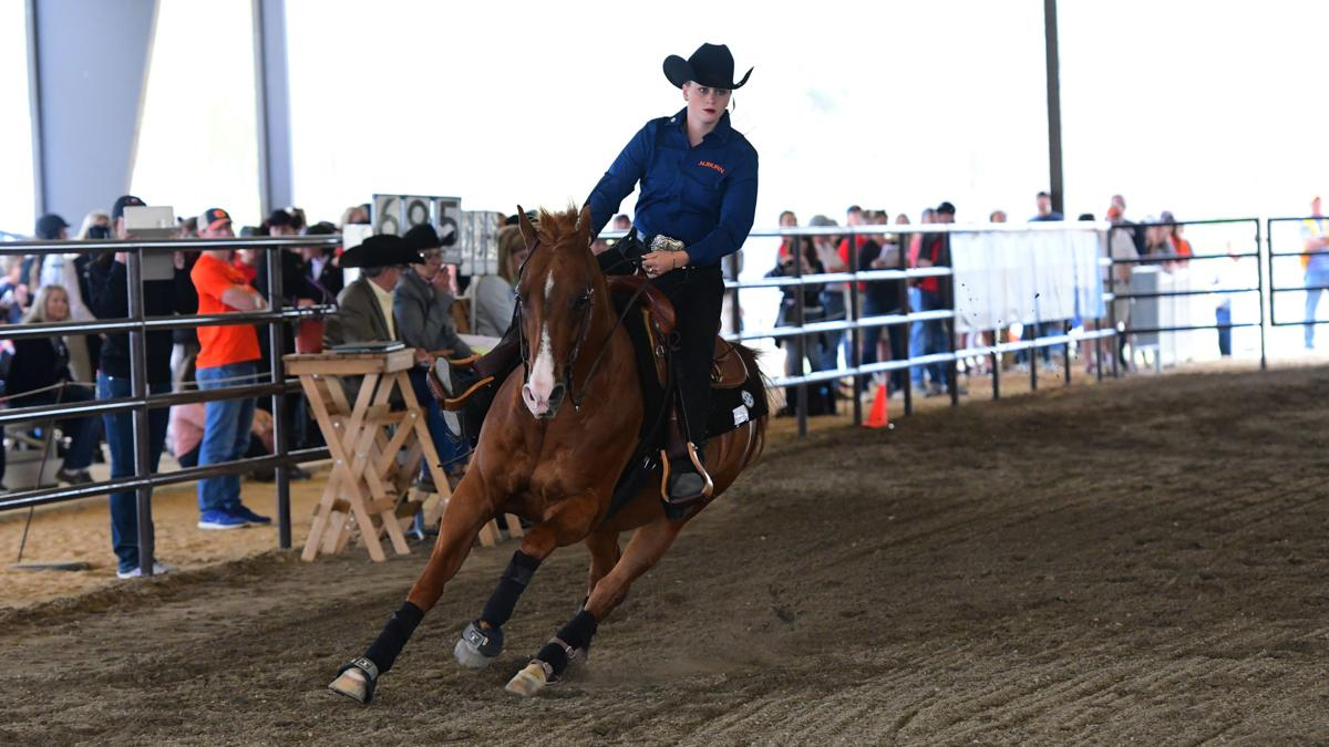 Auburn Equestrian Falls 1 Point Short Of Winning Second
