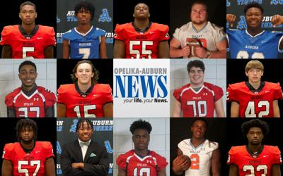 2019 All-Area Large School Offense