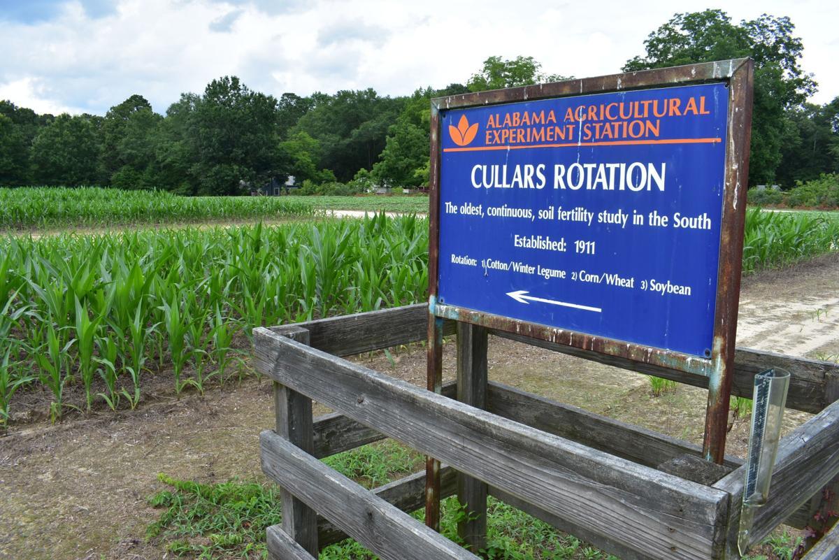 Cullars Rotation