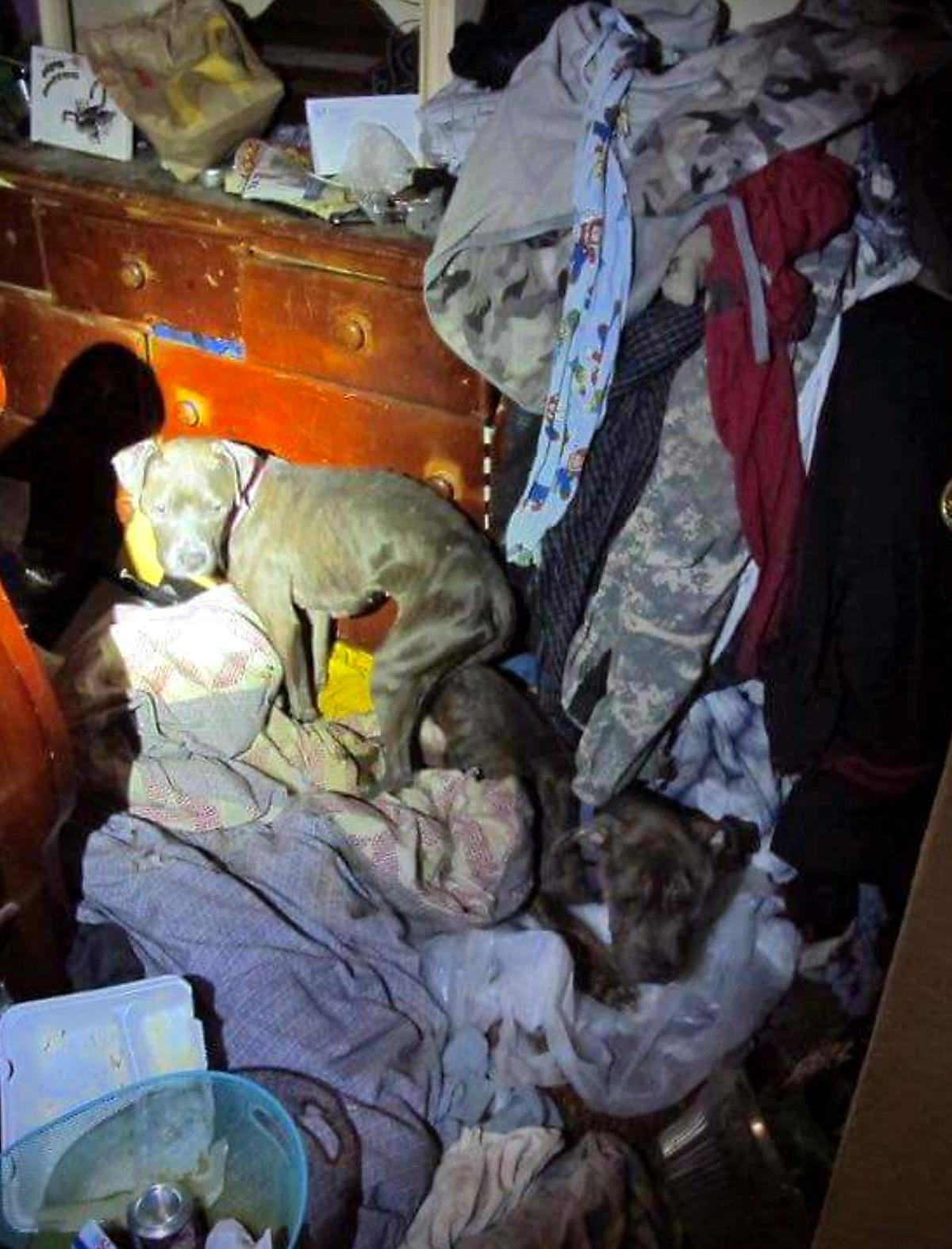 Florida Teen Found in Deplorable Living Conditions