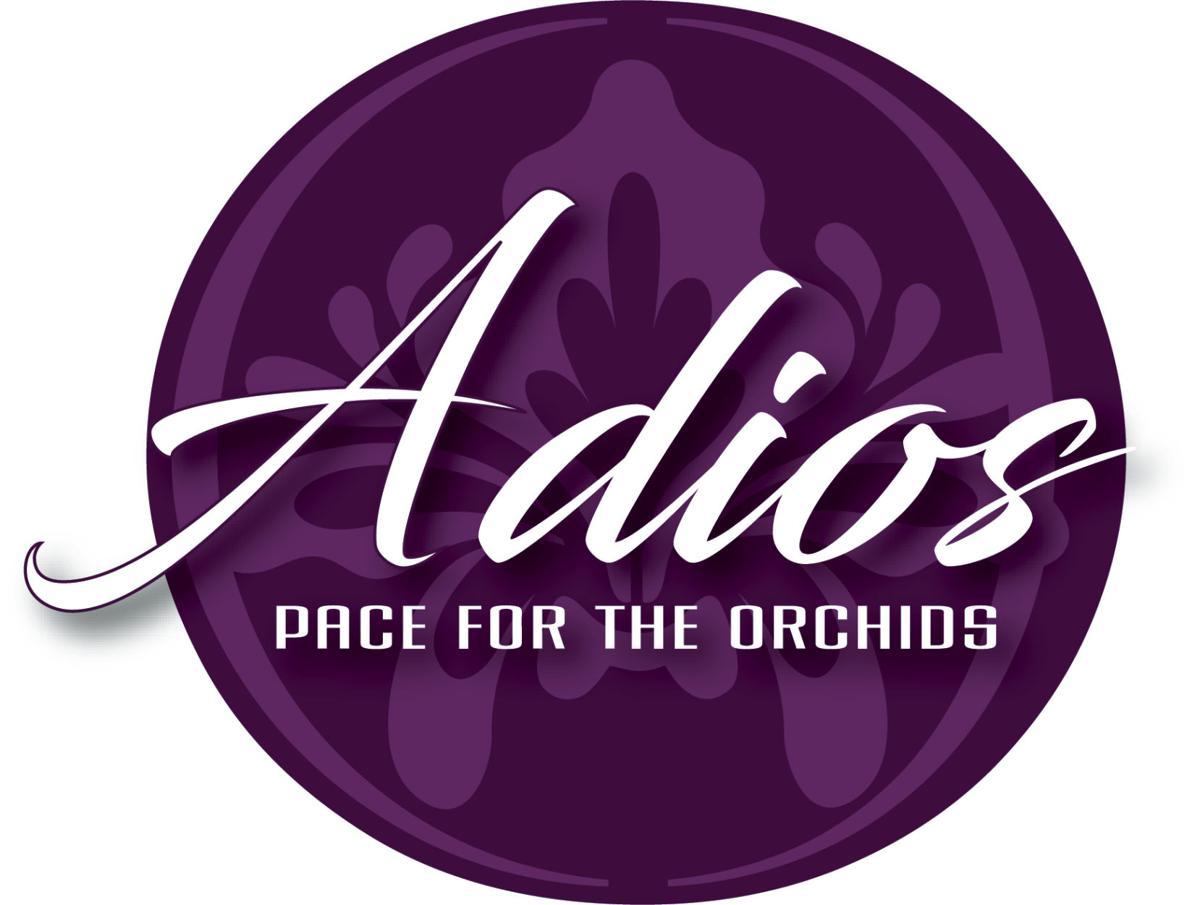 Adios Logo - 2019