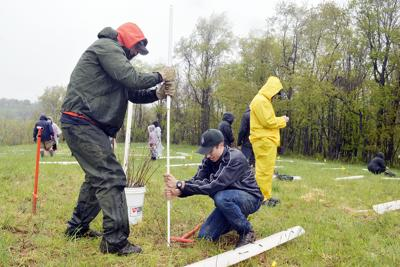 Carmichaels students plant trees for Arbor Day