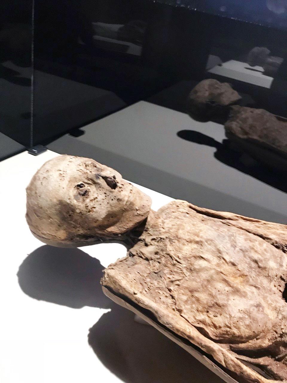 20191022_com_mummies2.jpg