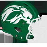 South Fayette helmet green