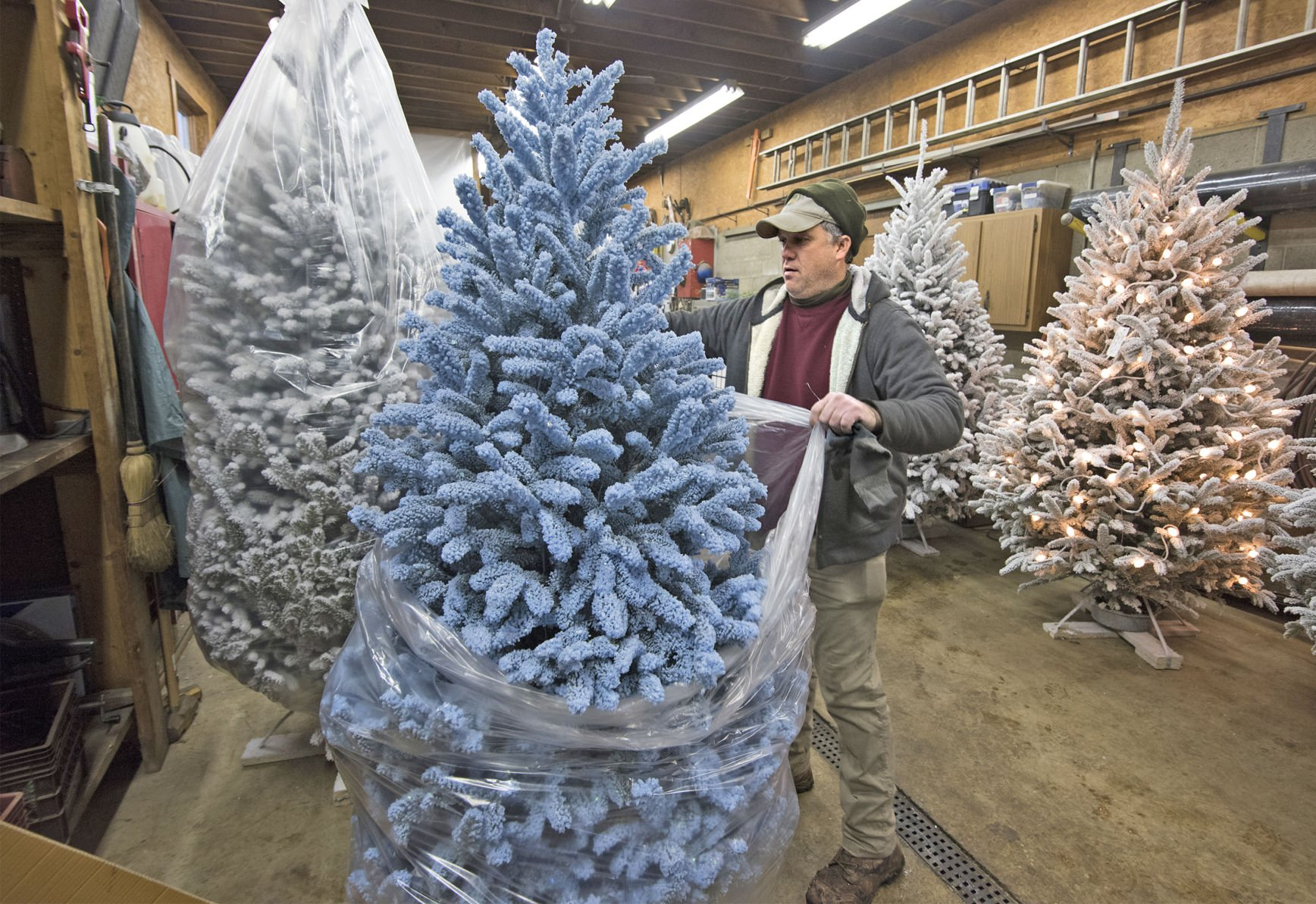 Monessen Nursery Perfects The Art Of Flocking Christmas Trees Local News Observer Reporter Com