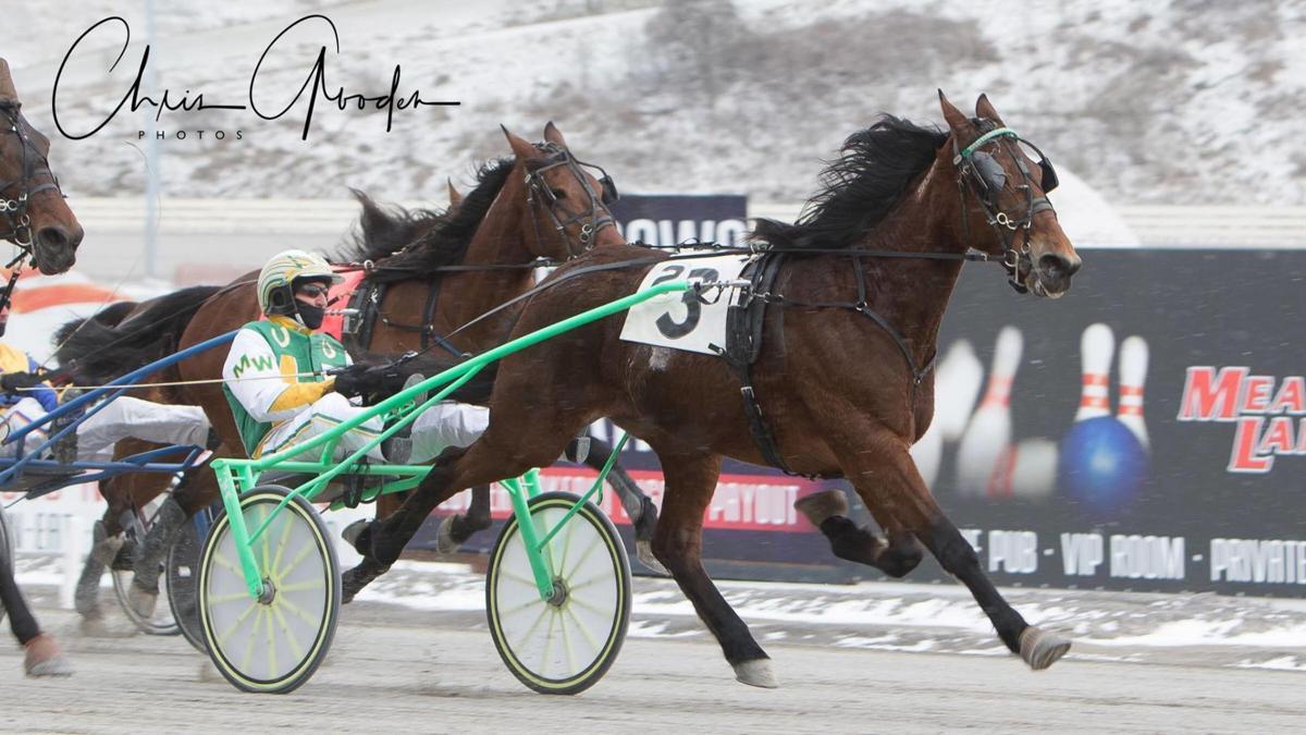 altmeyer wilder racing