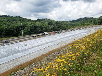 Highway flowers photo