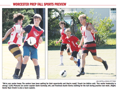 WP boys soccer 2019 preview