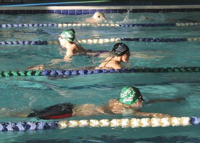 SD swim team 2018-19 preview