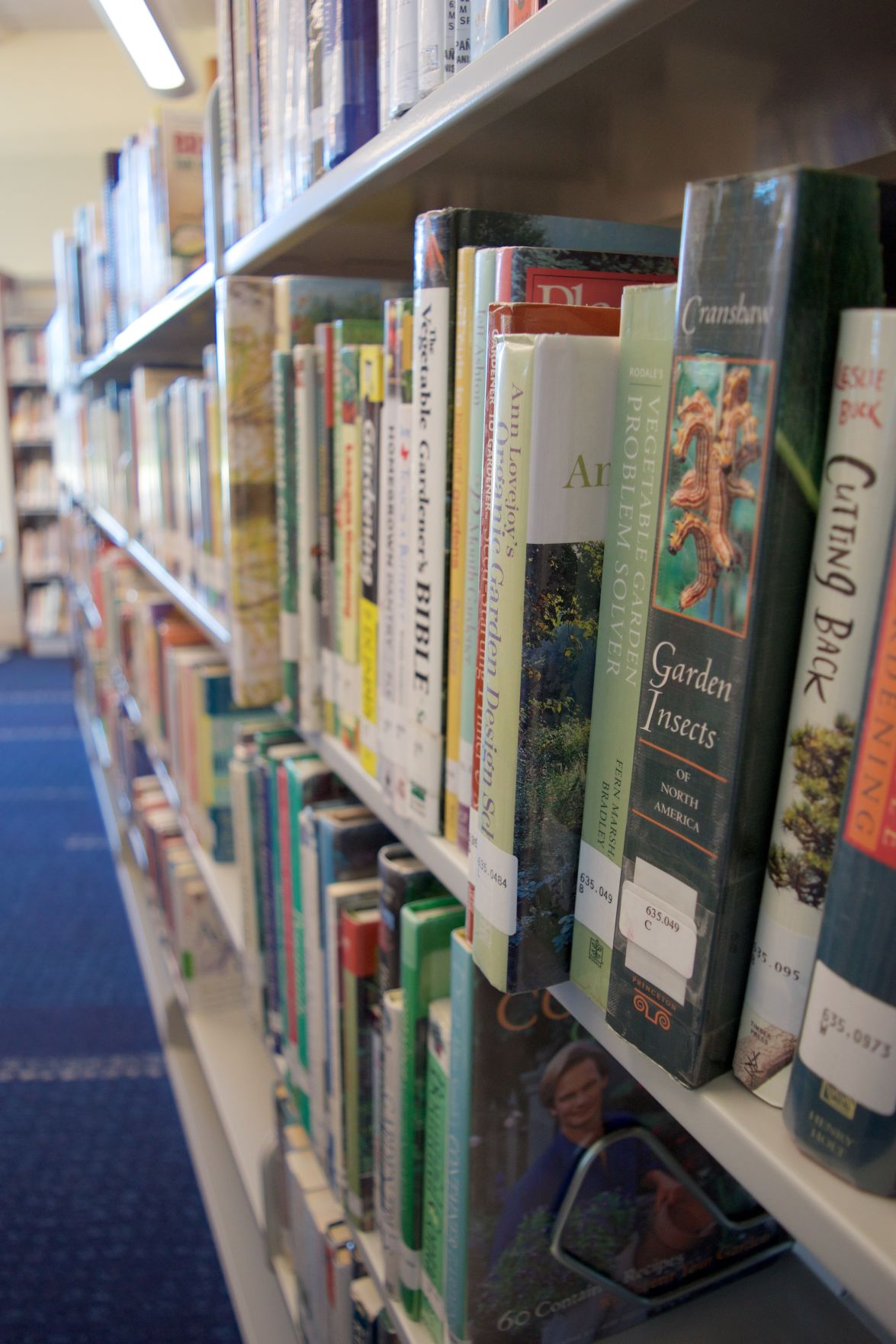New Berlin library branch opens to crowd of hundreds