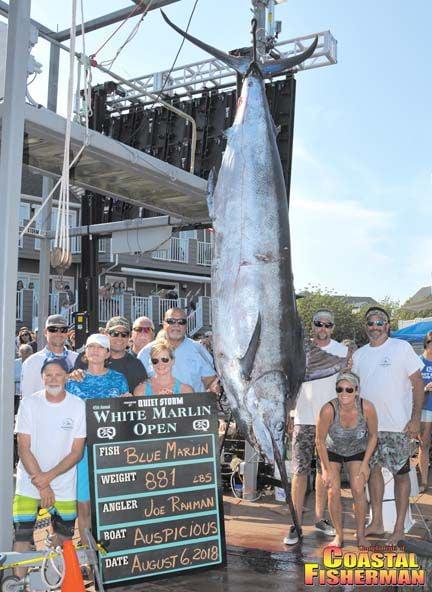 blue marlin 2018 881 lbs