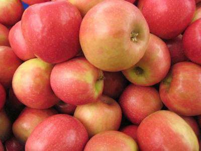 Local food pantries request supplies during shutdown