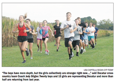 SD XC 2019 preview