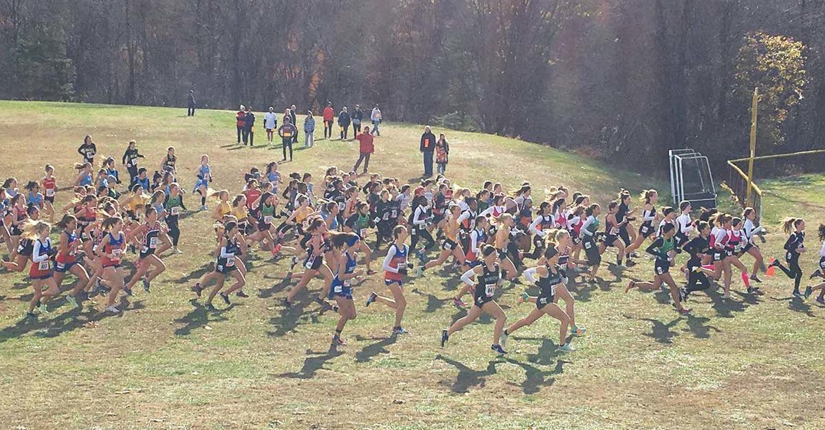 XC runners state