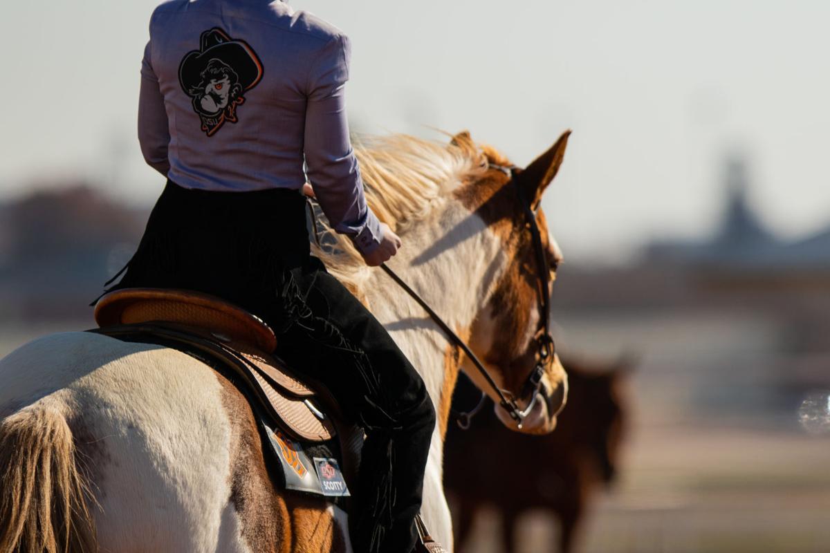 Equestrian_OSU_West_Texas-4.jpg