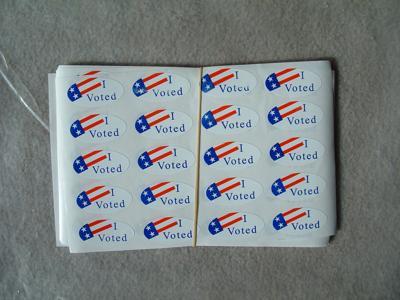 I voted (copy)