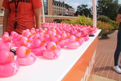 Don't Duck Around with Breast Cancer