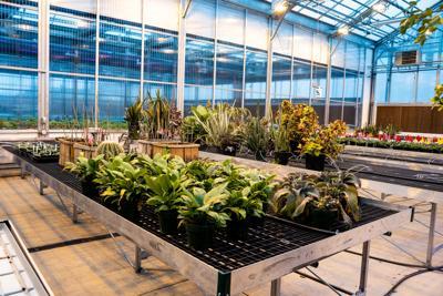 Greenhouse Learning Center-0267.jpg