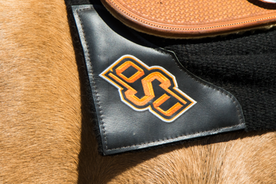 OSU equestrian