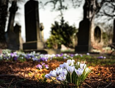 Cemetery, death, funeral, flowers, spring