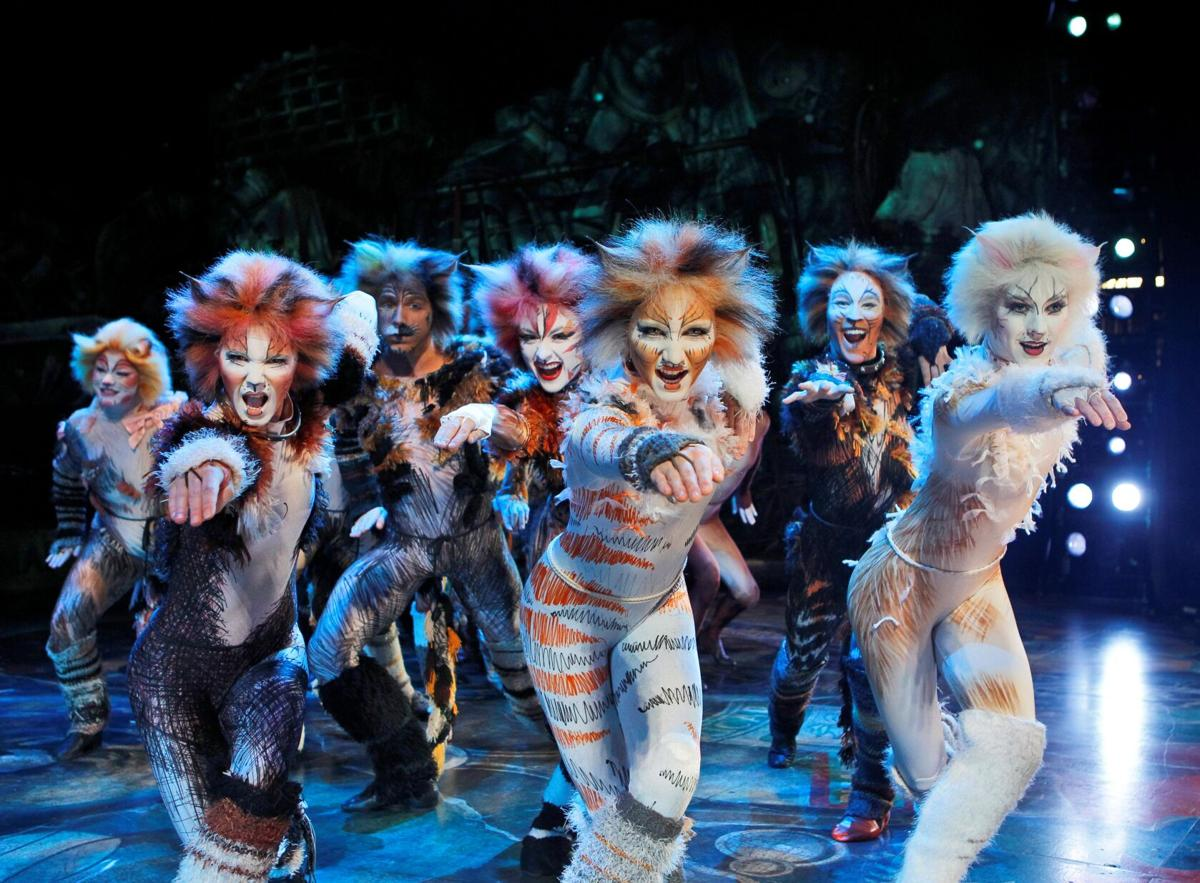 100121-owh-new-catsreview-p1