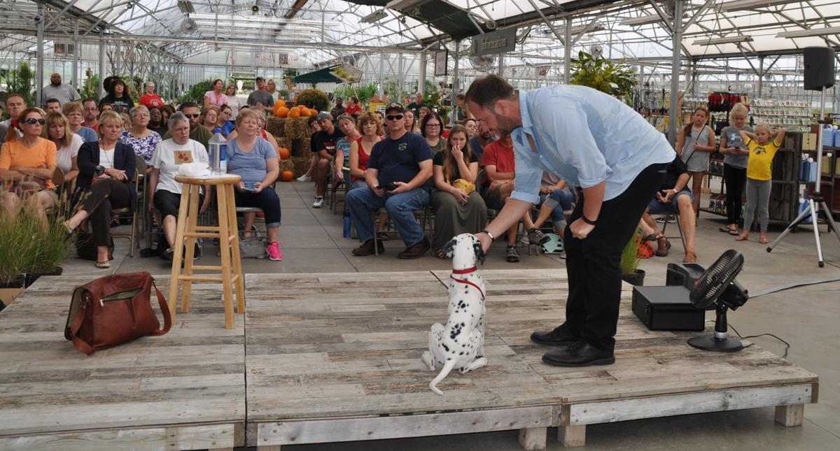 Attend a dog behavior workshop as a family