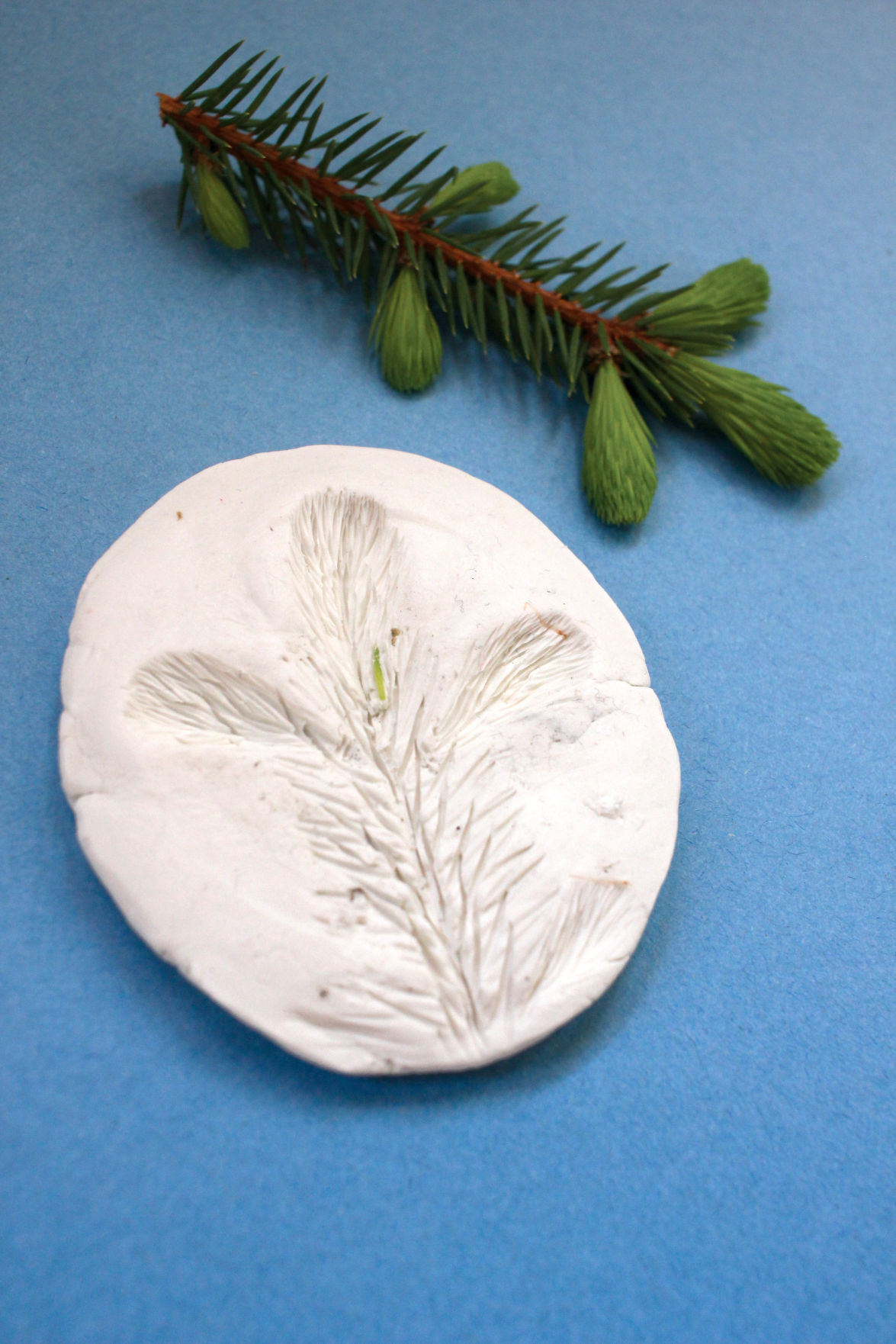Clay medallion craft