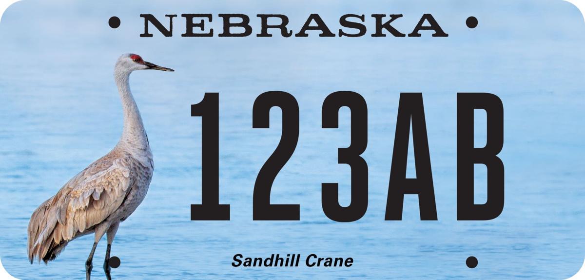 Crane-License-Plate-mockup (copy)