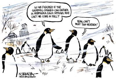 Jeff Koterba's latest cartoon: