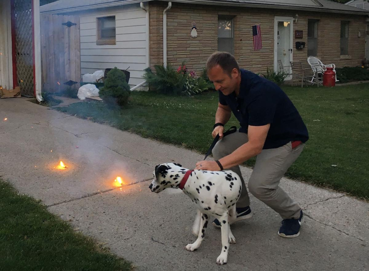 dog gone problems how to help a dog get over a fear of fireworks